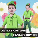 ファンタジーボーイ 120サイズ 子供サイズ コスチューム キャラクター風人気 流行 クリアストーン 4560320826439