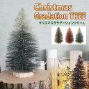 クリスマスツリー 24cm クリスマス ツリー ミニクリスマ...