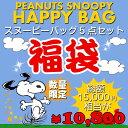 福袋 PEANUTS スヌーピー バッグ福袋 F 新春 数量限定 15000円相当 バッグ 鞄 5点セット ハッピーバッグ ブーフーウー BFWHB-6