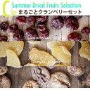 夏のドライフルーツC:まるごとクランベリーセット