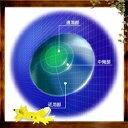 【20ポイント付】HOYA マルチビュー ソフトライト遠近両用 【ソフトタイプ】