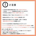 【送料・設置料無料】東芝 TOSHIBA REgZA(レグザ) 55V型 BS/CS 4K内蔵 有機ELテレビ 55X920AV機器 テレビ テレビ本体 有機ELテレビ