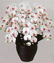 【本物のような造花】【光触媒】胡蝶蘭L 16本立ち