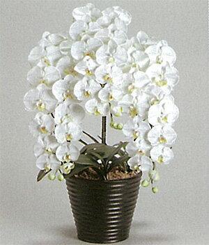 【送料無料】【光触媒】胡蝶蘭LL 3本立ち 驚くほど完成度の高い光触媒の造花です。贈答用としても大変喜ばれます。リビングなどのインテリアにおすすめです。
