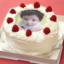 誕生日ケーキや記念日/パーティに♪【写真/バースデイケーキ】写真ケーキ(丸) 5号 生クリーム ちょっとしたプレゼントやお祝いに丁度いいサイズ★【誕生日ケーキ/バースデイケーキ/記念日/結婚式/写真】