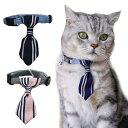 猫用 - 猫 首輪 猫用 首輪 鈴 ねこ 子猫 首輪 ペット 犬用 首輪 ペット用 犬 首輪 ネクタイ