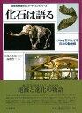 樂天商城 - 【バーゲンブック】化石は語る−ゾウ化石でたどる日本の動物相【中古】