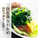 【国産】三陸産原藻生わかめ 800g(さんりくさんげんそうなまわかめ)