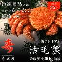 ギフト 毛ガニ カニ 500g 前後 北海道産 冷蔵 毛蟹 毛がに お中元 お歳暮 内祝い お返し
