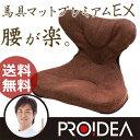 「馬具マットプレミアムEX」【姿勢 腰痛 クッション オフィ...