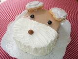 お誕生日やプレゼントに!わんこケーキBお知らせ・・クリスマス期間12/20〜12/27まではわんこケーキBのお届け出来ません。