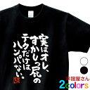 おもしろtシャツ 漢字 文字「実はオレ、すかしっ屁のテクだけはハンパない。」メッセージTシャツ ティ