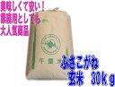 【本州・四国送料無料】27年産  千葉県産ふさこがね 玄米 30kg