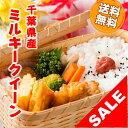 【スーパーセール】29年産 千葉県産 ミルキークイーン 白米 10kg (5kg×2)