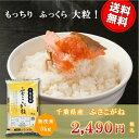 ショッピング無洗米 29年産 千葉県産ふさこがね 無洗米 5kg