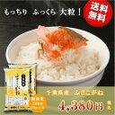 ショッピング無洗米 29年産 千葉県産ふさこがね 無洗米 10kg(5kg×2)