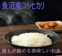 ショッピング日本一 29年産 魚沼産コシヒカリ 無洗米5kg