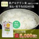ショッピング10kg 29年産 千葉県産 春陽 (低グルテリン米) 白米 10kg(5kg×2)