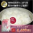 ショッピング10kg 29年産 千葉県産 あきたこまち 白米 10kg(5kg×2)