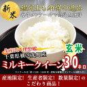 ショッピング玄米 29年産 千葉県産 生産法人 理想郷 ミルキークイーン 玄米 30kg