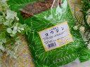 紅参こうじん(小島漢方)○切500g×1