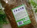イチョウ葉(小島漢方)500g×1袋