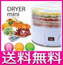 ドライフルーツメーカー 野菜乾燥機 ドライフード 干し野菜 乾燥野菜 フードドライヤー EB-RM3100A 【送料無料】