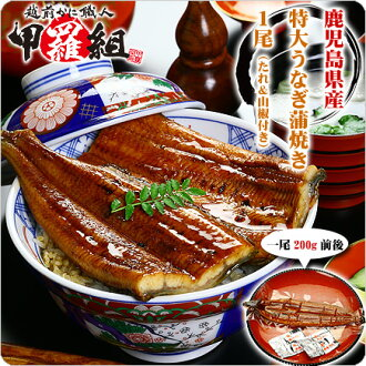 200 g back and forth from Kagoshima Prefecture oversized unagi Kabayaki