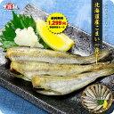 送料無料1,299円!更に2個で500円OFFクーポンあり!北海道産こまい一夜干し300g(13尾前後) 氷下魚 コマイ かんかい カンカイ 寒海