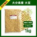 大分県産 大豆 1kg 規格外大豆《大粒》
