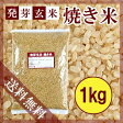 【メール便で送料無料】焼き米 1kg【発芽玄米】