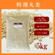 特選丸麦 5kg ※もち麦とうるち麦混合