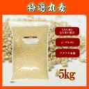 特選丸麦 5kg〔チャック付〕 ※もち麦とうるち麦混合