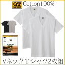 GTホーキンス 綿100%Vネック半袖Tシャツ2枚組!グンゼ【メール便可】