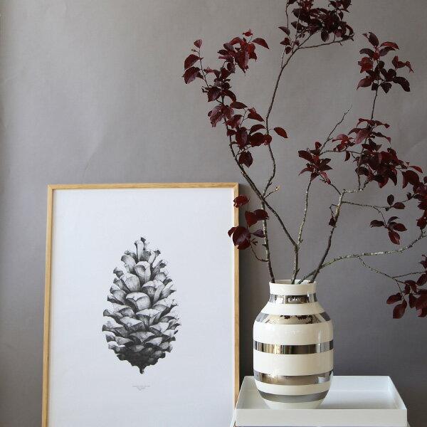 RoomClip商品情報 - Paper Collective(ペーパーコレクティブ) ポスター 50×70cm 【パインコーン】松ぼっくり グレー 北欧 インテリア