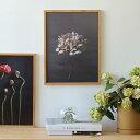 6月下旬頃発送予定!Paper Collective (ペーパーコレクティブ)ポスター Still Life 04(スティルライフ)あじさい 30×40cm北欧/インテリア