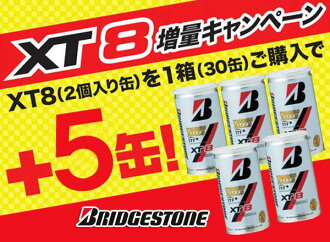 BRIDGESTONE (Bridgestone) XT8 (eight エックスティ) 1 box ( 30 + 5 cans = 70 ball ) tennis ball fs3gm
