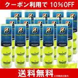 【10%OFFクーポン対象】BRIDGESTONE(ブリヂストン)TOUR PRO(ツアープロ)1箱(15缶/60球)テニスボール