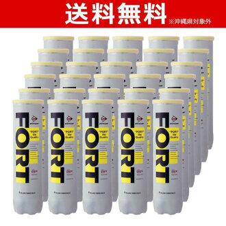 Tennis ball DUNLOP ( Dunlop ) fs3gm