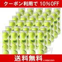 【10%OFFクーポン対象】DUNLOP(ダンロップ)プラクティス1箱(30缶=120球)テニスボー