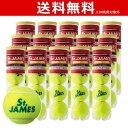 「1箱ごとにグリップ2本プレゼント」「新パッケージ」DUNLOP(ダンロップ)「St.JAMES(セントジェームス)(15缶/60球)」テニスボール