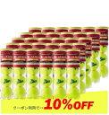 【10%OFFクーポン対象】St.JAMES(セントジェームス)(30缶)テニスボール