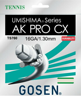 GOSEN (go sen) TS760 tennis gut (strings) fs3gm