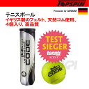 TOPSPIN(トップスピン)【Balls Unlimited Code Black 4-Balls Can TOBUCB】テニスボール【KPI】【kpi_so...