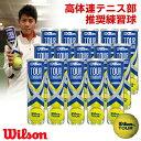 【全品10%引クーポン対象】Wilson(ウイルソン)「TOUR STANDARD(ツアー・スタンダード) 1箱(15缶) WRT103800」テニスボール