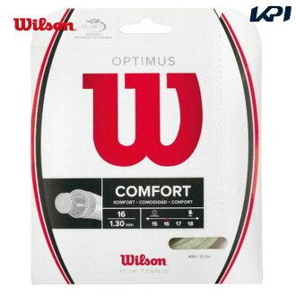 「 윌슨 페어 」 Wilson (윌슨) 「 OPTIMUS 16 WH WRZ947700 」 경식 테니스 스트링 「 운영 」
