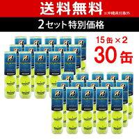 BRIDGESTONE(ブリヂストン)TOUR PRO(ツアープロ)2箱セット(15缶×2=120球)テニスボールの画像