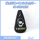 BIGBANG ペンライトケース G-DRAGON T.O.P TEAYANG / ビッグバン ペンライトポーチ G-DRAGON T.O.P TEAYANG