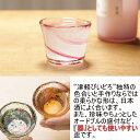 【日本製】 切立 盃 ぐい呑み 選べる12種類 津軽びいどろ 味わいの彩