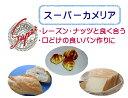 スーパーカメリヤ 5kg【小麦粉・パン用粉・強力粉・ホームベーカリーにも最適】